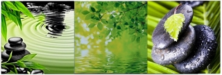 CANVAS GREEN NATUR  20x60